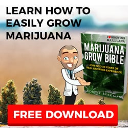 Free Marijuana Grow Bible
