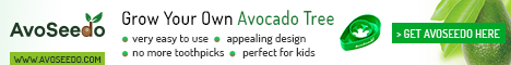 what is avocado a fruit or vegetable - avoseed ad