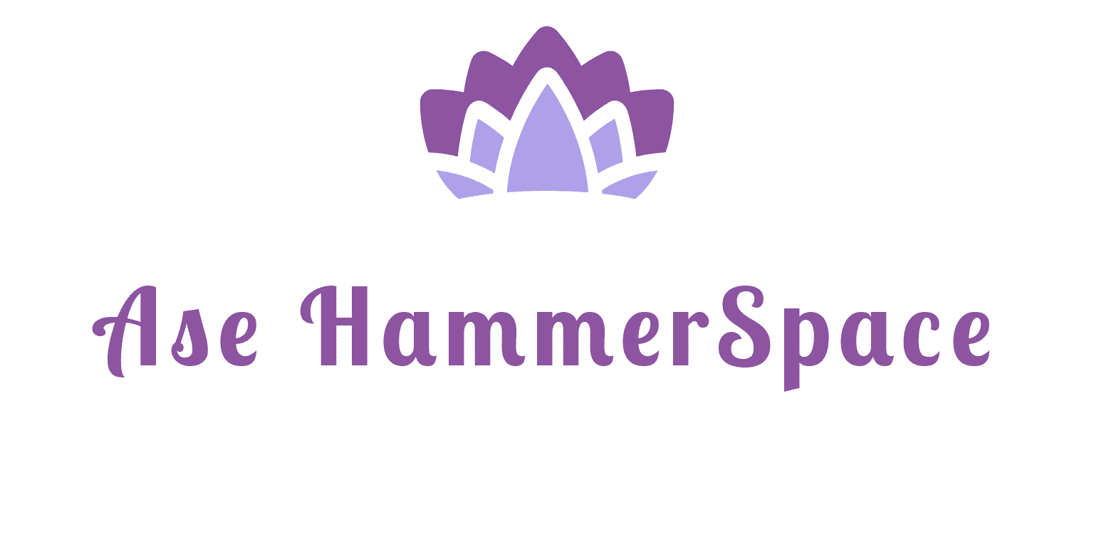 Ase HammerSpace