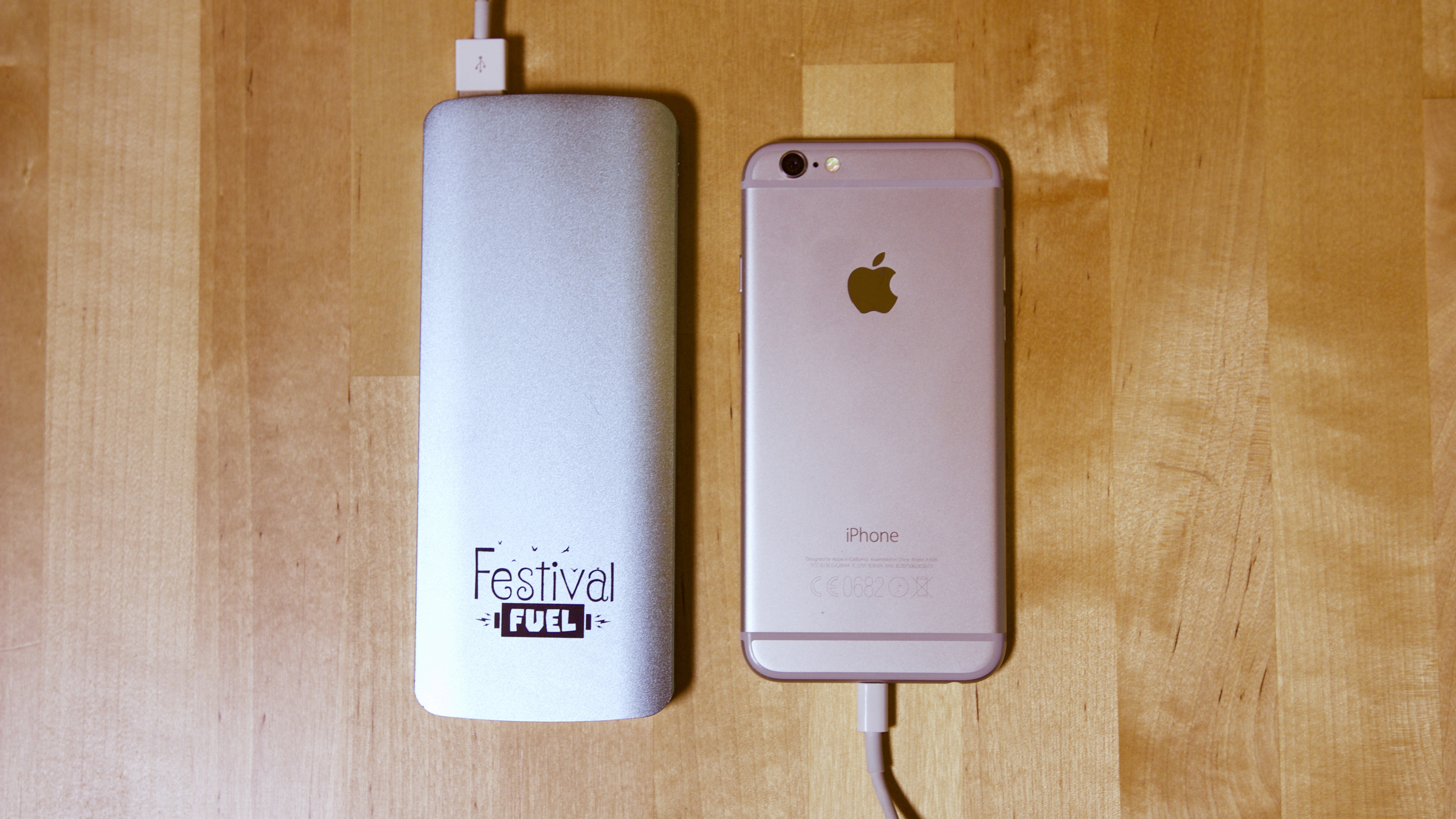 Festival Portable Charger